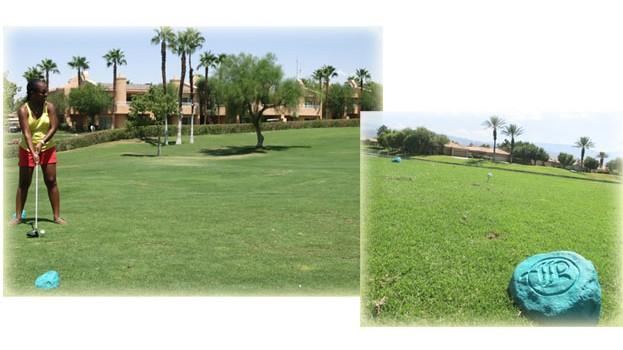 Palm-Springs9