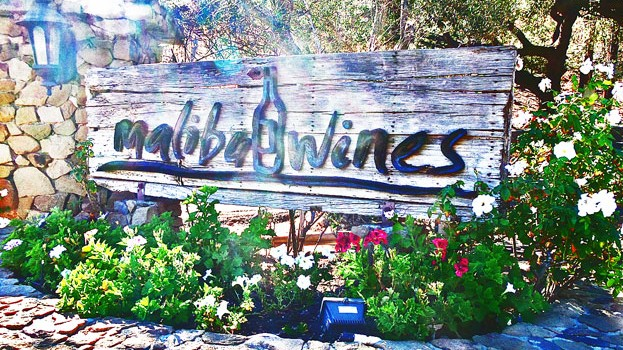 Sunny Day at Malibu Wines